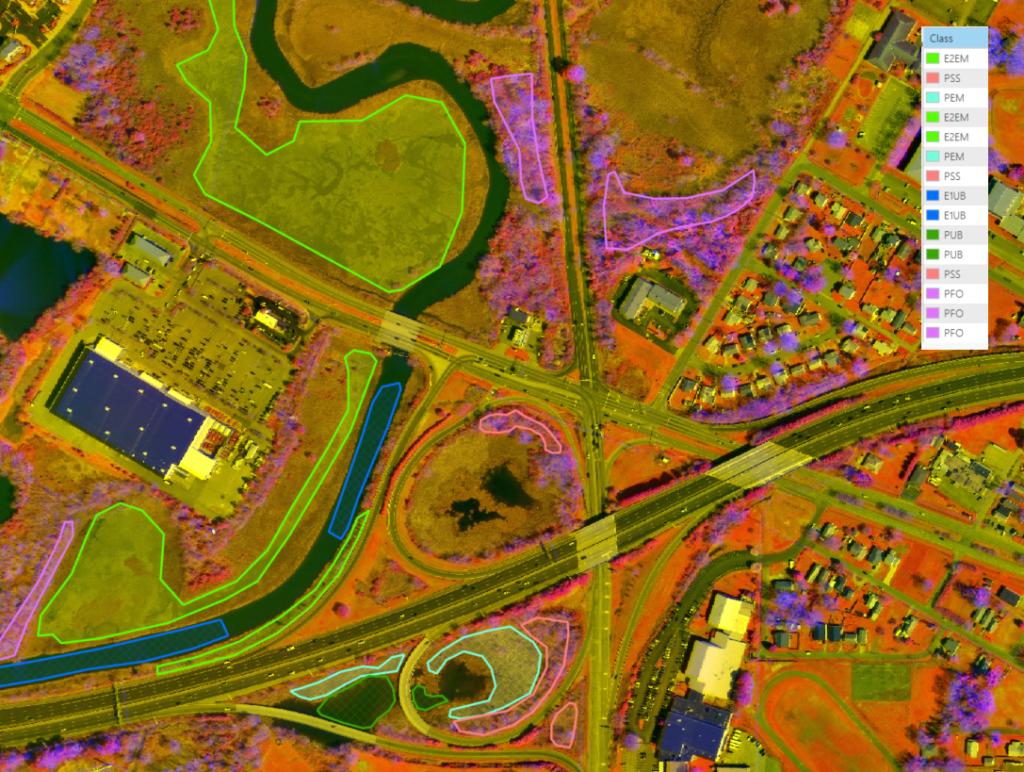 wetland remote sensing